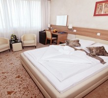 "HOTEL ""KARDIAL"" TESLIĆ Mala 5"